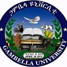 Gambella University Students Forum