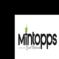 MInTopps Staffing Solutions Company Hyderabad India